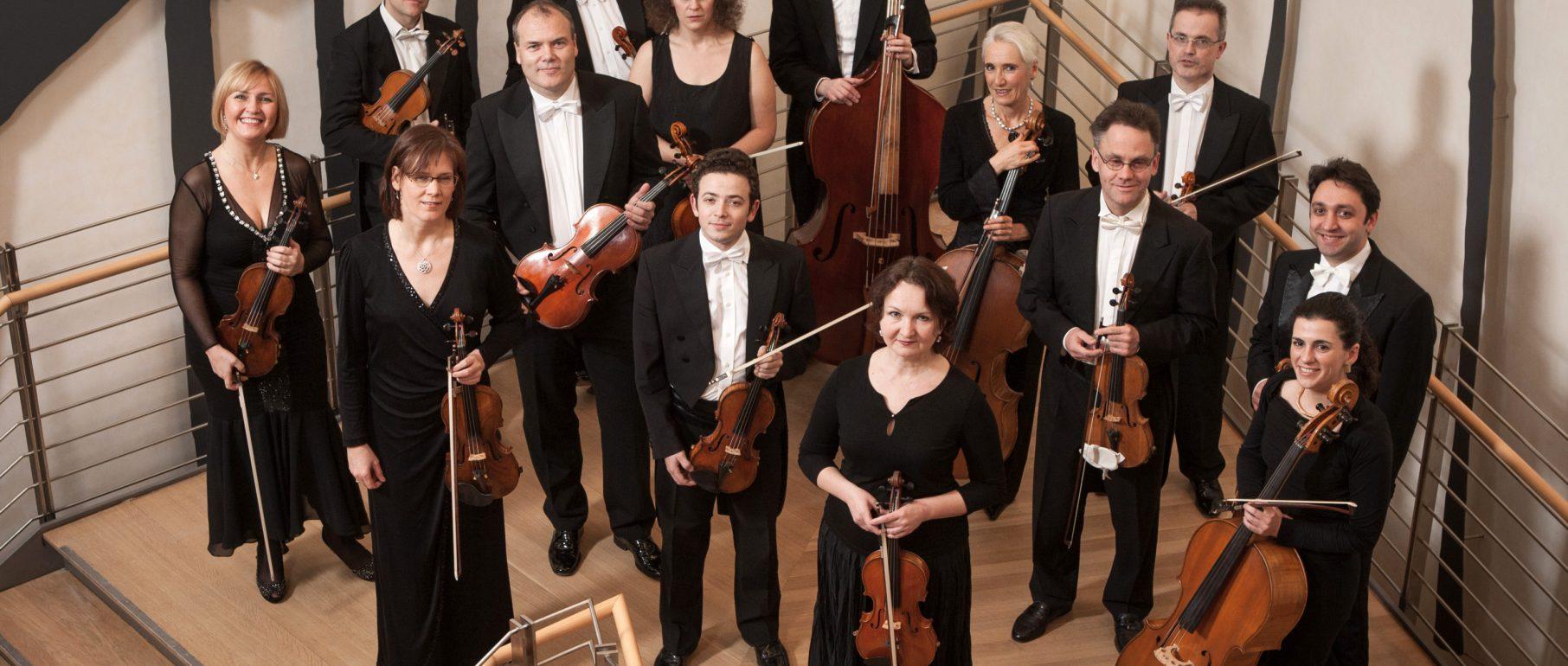 Südwestdeutsches Kammerorchester ohne Dirigent, Draufsicht